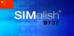 SIMglish Video Chinese