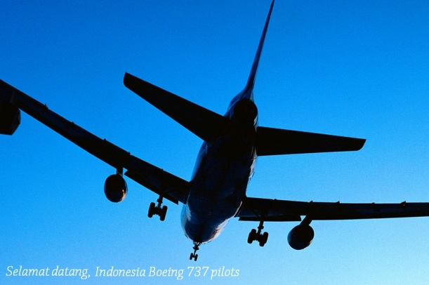 jet-in-flight-silhouette-blue-background2